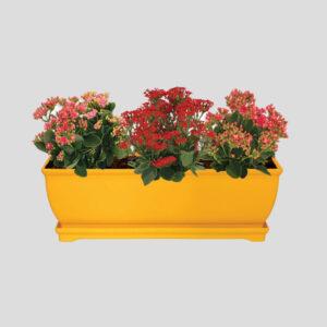 گلدان رویال با زیر گلدانی